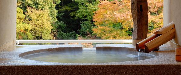 温泉旅館の設計 『温泉分析書の記載事項を知る』 箱根温泉 とpH
